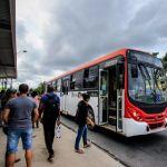 Quatro linhas de ônibus terão números de identificação alterados