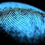Concurso internacional de pesquisa sobre identificação humana e forense