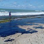 Governo tem suspeita sobre origem de manchas de óleo, diz Bolsonaro