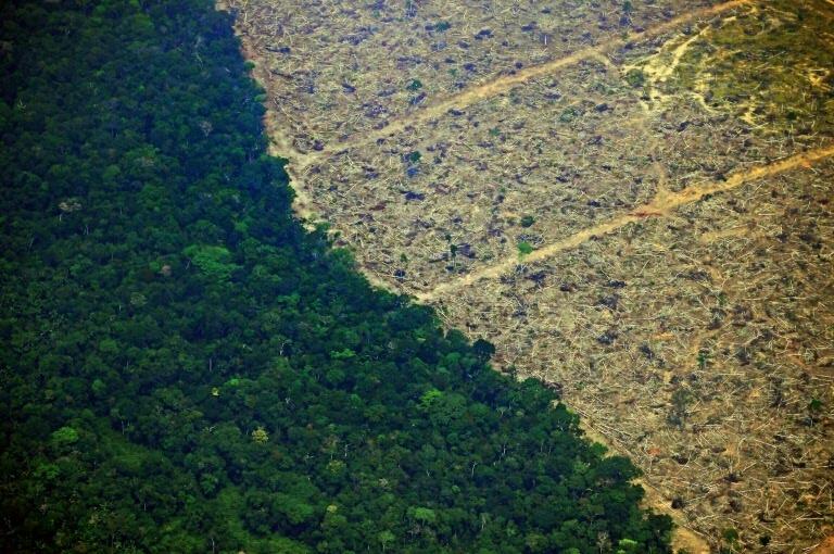 Imagem aérea de 23 de agosto de 2019 mostra terrenos desmatados na Amazônia - AFP/Arquivos