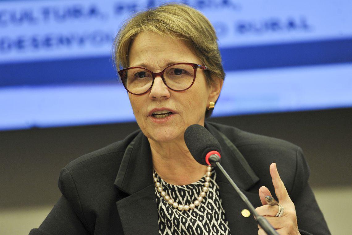 A ministra da Agricultura, Tereza Cristina, participa de audiência pública na Comissão de Agricultura da Câmara dos Deputados.