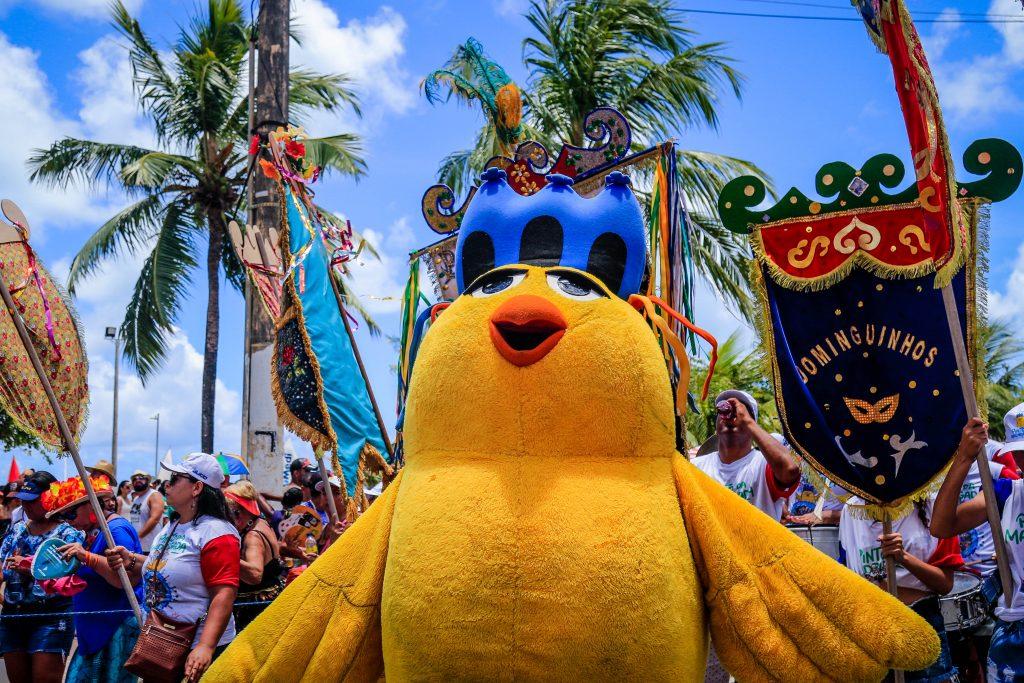 15022020-Previa-Carnaval-Pinto-Madrugada-PF_0116-1024x683