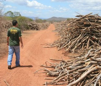 Levantamento mostra infrações ambientais de políticos alagoanos