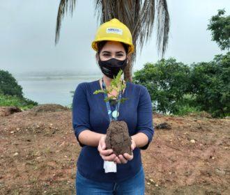 Plantio de árvores nativas celebra Dia Mundial do Meio Ambiente