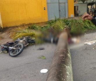 Ventos fortes derrubam palmeira em cima de motociclista em Maceió, veja imagens